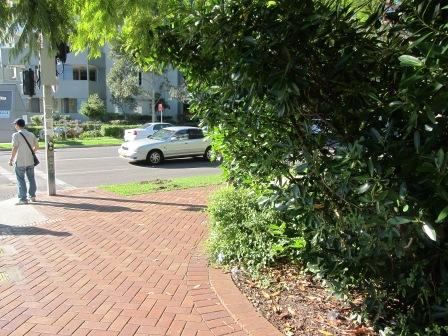 Commercial property for lease in hornsby 2