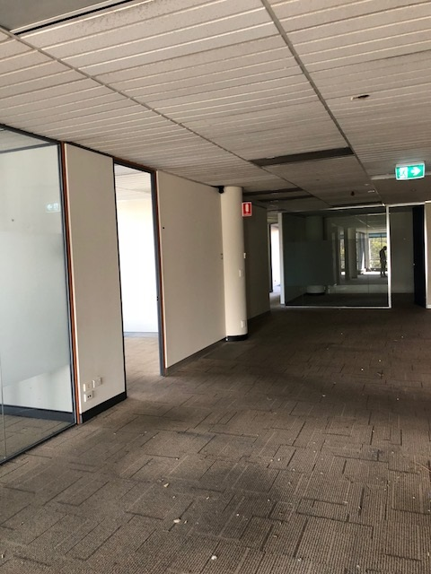 Commercial property for lease in chatswood 2