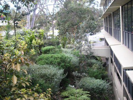 Commercial property for lease in pymble 1